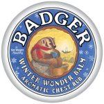 B071 Mini Winter Wonder